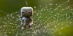 Comment créer une toile d'araignée avec Houdini et Maya