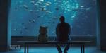 Tippett Studio : VFX Breakdown pour Ted