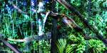 Relief : Binocle 3D lance TaggerMovie