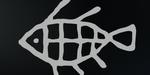 Autodesk lance l'édition 20ème anniversaire de Flame