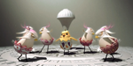 Ballet of Unhatched Chicks, par Shaun Seong-Young Kim