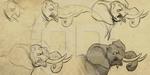 Aaron Blaise : étude sur le dessin d'éléphant pour Legend of Tembo