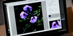 Adobe : futur outil anti-flou dans Photoshop, Lightroom 5 en beta