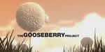Projet Gooseberry : lancement de la campagne de levée de fonds