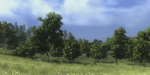 GDC 2014 : SpeedTree for Games 7 se dévoile