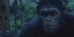 La Planète des Singes : L'Affrontement, nouvelle bande-annonce